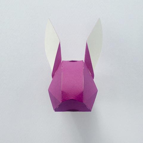 gupa_rabbit_pb1