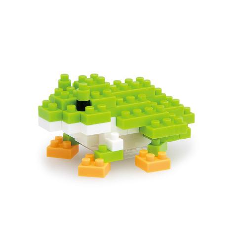 Japanese tree frog_1