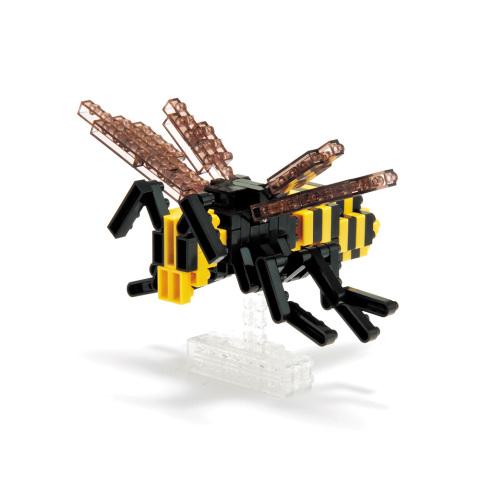 asian giant hornet_1