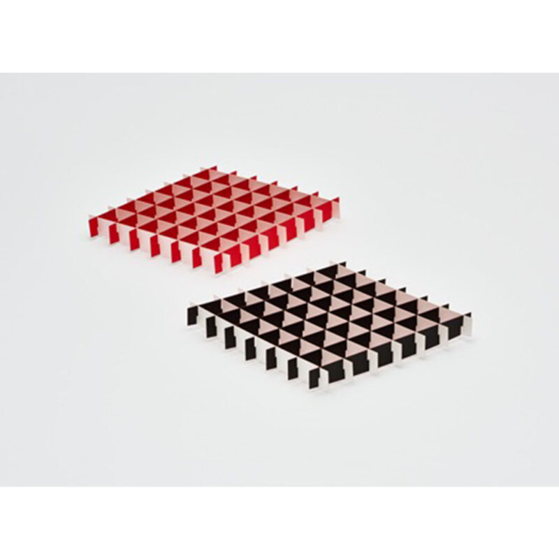 grid_insect_square_main