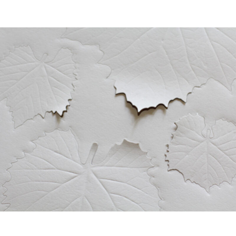 paper-leaf-grape